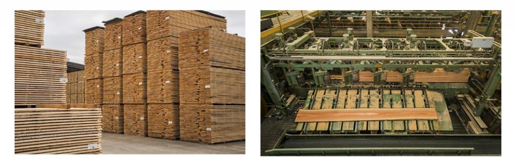 【右はウルフォー社製材工場、左はKD前の板材養生の様子】